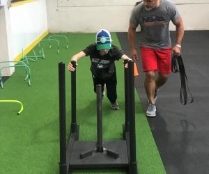 Weight sled with strength and conditioning trainer